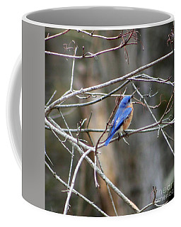 Gathering Twigs Coffee Mug