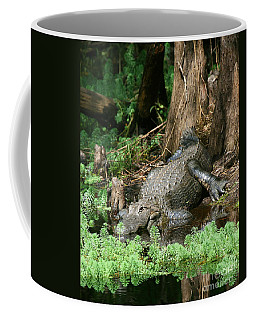 Gator In The Swamp Coffee Mug by Myrna Bradshaw