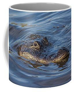 Gator - Myakka State Park Coffee Mug