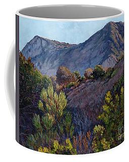 Gaviota Afternoon Coffee Mug