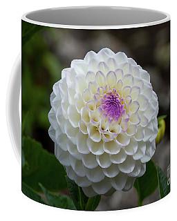 Gaylen Rose Dahlia 2 Coffee Mug