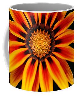 Gazania L Coffee Mug