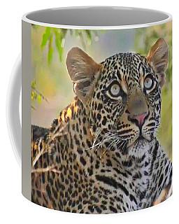 Gazing Leopard Coffee Mug