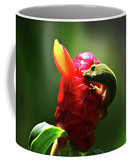 Coffee Mug featuring the photograph Gecko #1 by Anthony Jones