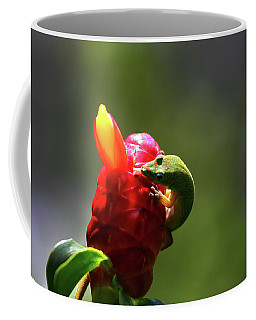 Coffee Mug featuring the photograph Gecko #2 by Anthony Jones