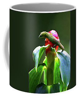Coffee Mug featuring the photograph Gecko #3 by Anthony Jones