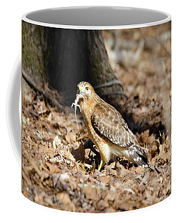 Coffee Mug featuring the photograph Gecko For Lunch by George Randy Bass
