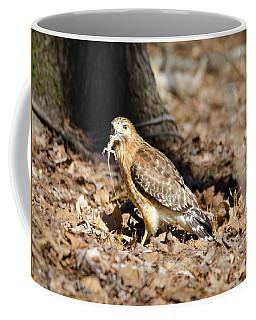 Gecko For Lunch Coffee Mug by George Randy Bass