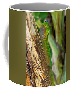 Gecko Up Close Coffee Mug