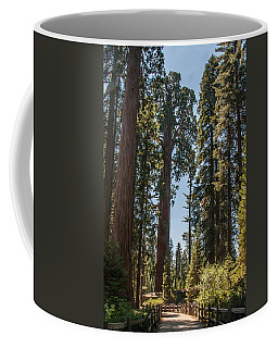 General Grant Tree Kings Canyon National Park Coffee Mug