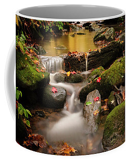 Gentle Cascades Of Autumn  Coffee Mug