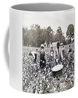 Georgia Cotton Field - C 1898 Coffee Mug by International  Images