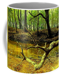 Coffee Mug featuring the photograph Georgia Creek Bed by Belinda Lee