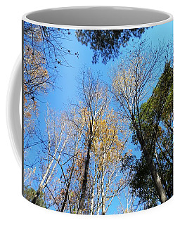 Coffee Mug featuring the photograph Georgia Trees Winters Coming by Belinda Lee