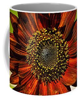 Gerber Daisy Full On Coffee Mug