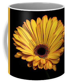 Coffee Mug featuring the photograph Gerber Daisy by James Sage