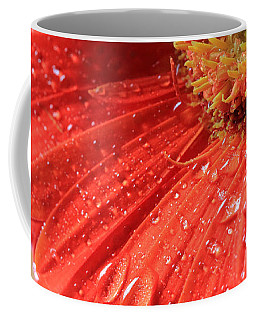 Gerbera Daisy After The Rain Coffee Mug