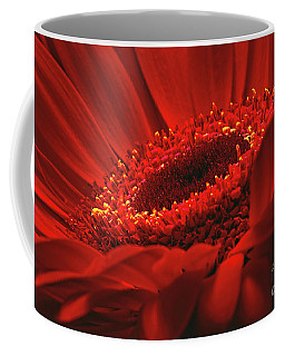 Coffee Mug featuring the photograph Gerbera Daisy In Red by Sharon Talson