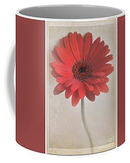 Coffee Mug featuring the photograph Gerbera Daisy by Lyn Randle