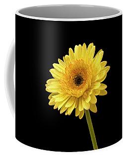 Gerbera Portrait Coffee Mug