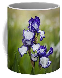 German Iris Blossoms Coffee Mug
