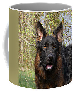 Coffee Mug featuring the photograph German Shepherd Close Up by Sandy Keeton