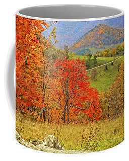 Germany Valley Dressed In Autumn Coffee Mug