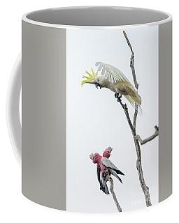 Get Off My Perch Coffee Mug