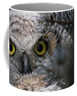 Coffee Mug featuring the photograph Getting A Better Look by Brad Allen Fine Art