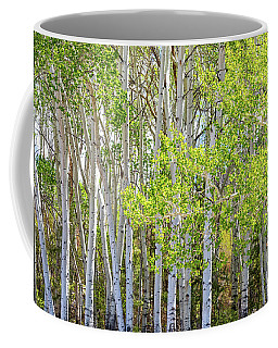 Getting Lost In The Wilderness Coffee Mug by James BO Insogna