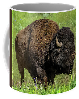 Getting Ready For Rut Coffee Mug by Yeates Photography