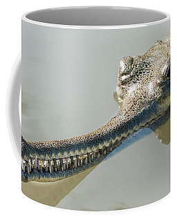 Gharial Coffee Mug