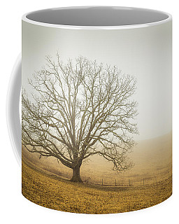 Tree In Fog - Blue Ridge Parkway Coffee Mug