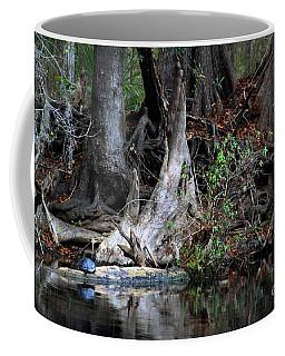 Giant Cypress Knees Coffee Mug