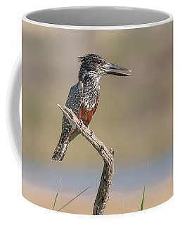Giant Kingfisher Coffee Mug