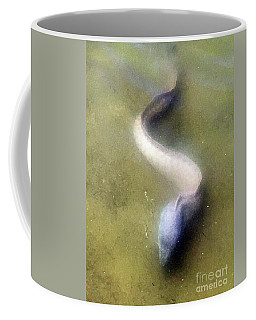 Giant Moray Eel Coffee Mug