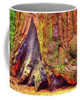 Giant Sequoia Base With Fire Scar Coffee Mug