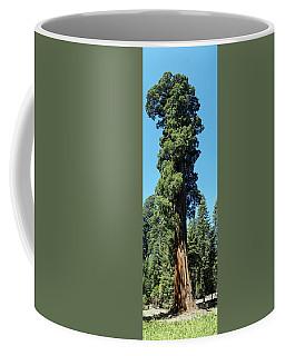 Giant Sequoia, Sequoia Np, Ca Coffee Mug