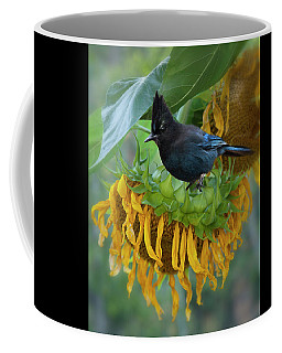 Giant Sunflower With Jay Coffee Mug