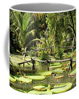 Giant Waterlily Paddies Vietnam Coffee Mug by For Ninety One Days