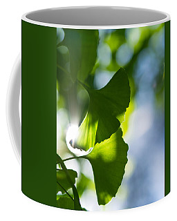 Gingko Leaves In The Sun Coffee Mug