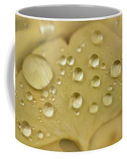 Ginkgo Balls Coffee Mug