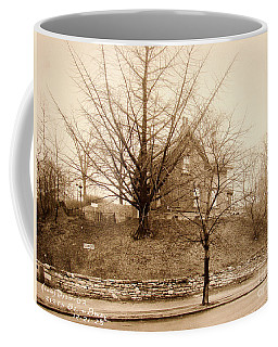 Ginkgo Tree, 1925 Coffee Mug