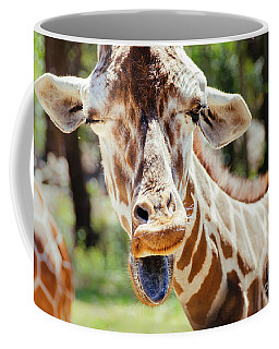 Coffee Mug featuring the photograph Giraffe by Andrea Anderegg