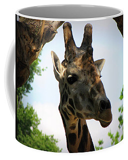 Coffee Mug featuring the photograph Giraffe by Beth Vincent