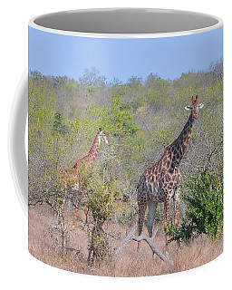 Giraffe Family On Safari Coffee Mug