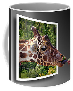 Giraffe Feeding Out Of Frame Coffee Mug
