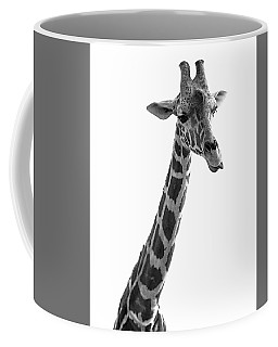 Coffee Mug featuring the photograph Giraffe In Black And White 3 by James Sage