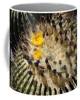 Giving Birth Barrel Cactus Yellow Flowers Coffee Mug