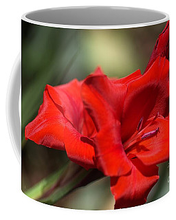 Gladioli Manhattan Variety  Coffee Mug